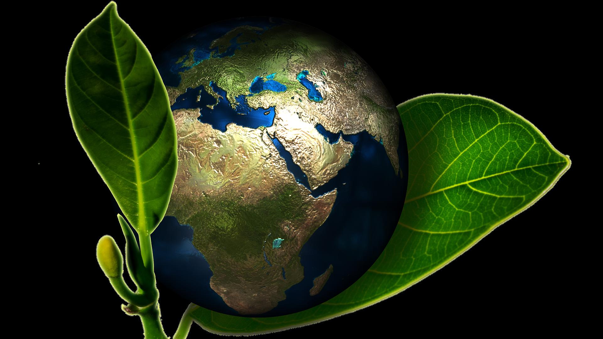 Dekoracja, planeta ziemia na tle zielonych liści